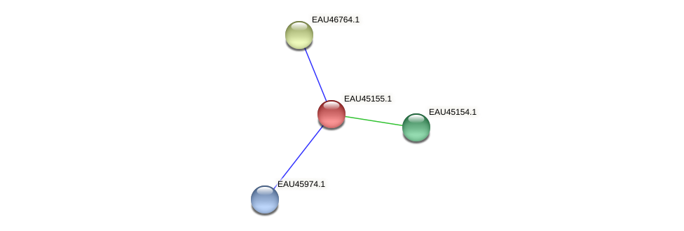 R2601_12895 protein (Pelagibaca bermudensis) - STRING interaction network