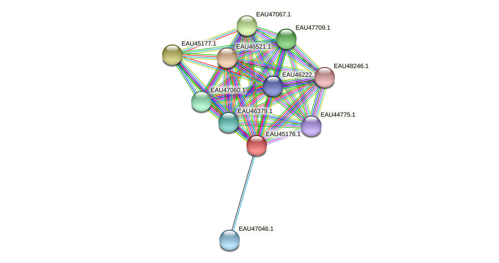 R2601_13000 protein (Pelagibaca bermudensis) - STRING interaction network
