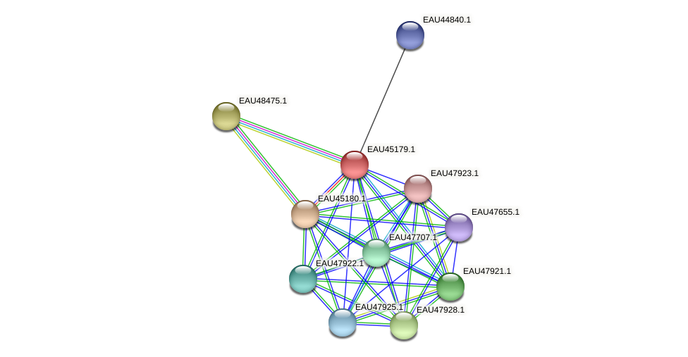 R2601_13015 protein (Pelagibaca bermudensis) - STRING interaction network