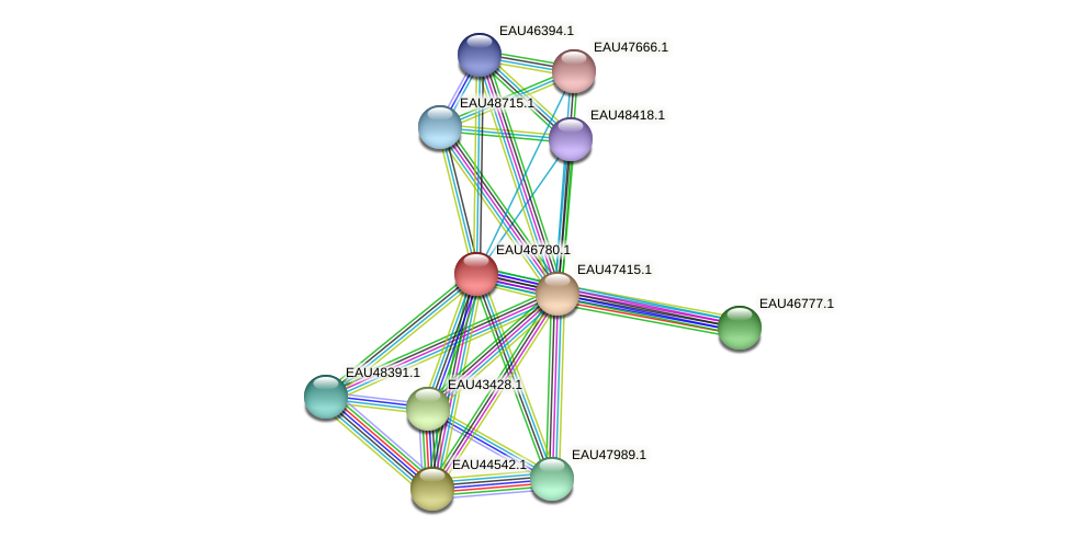 R2601_13199 protein (Pelagibaca bermudensis) - STRING interaction network