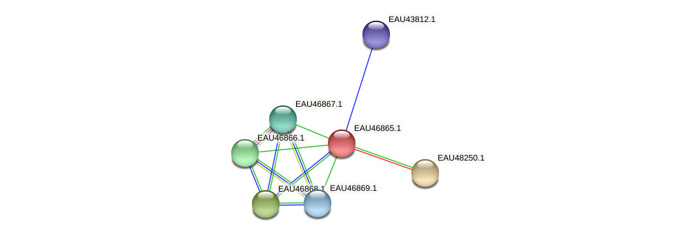 R2601_13624 protein (Pelagibaca bermudensis) - STRING interaction network