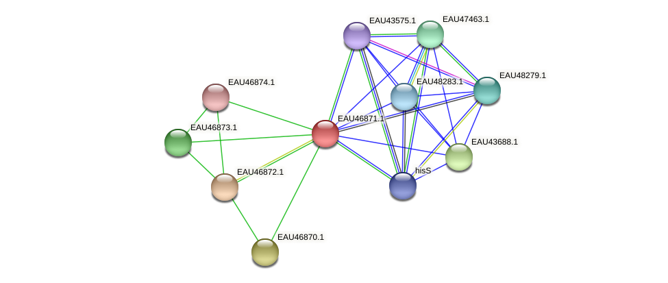 R2601_13654 protein (Pelagibaca bermudensis) - STRING interaction network