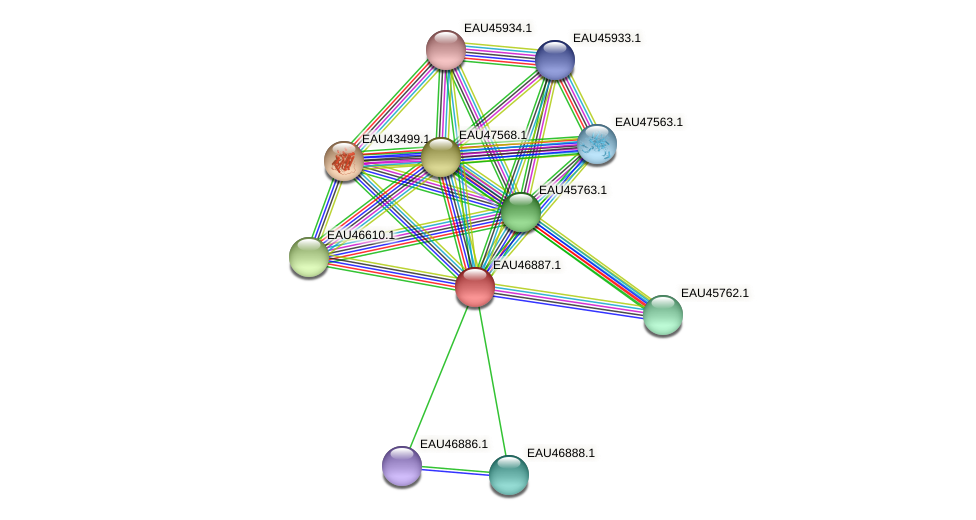 R2601_13734 protein (Pelagibaca bermudensis) - STRING interaction network