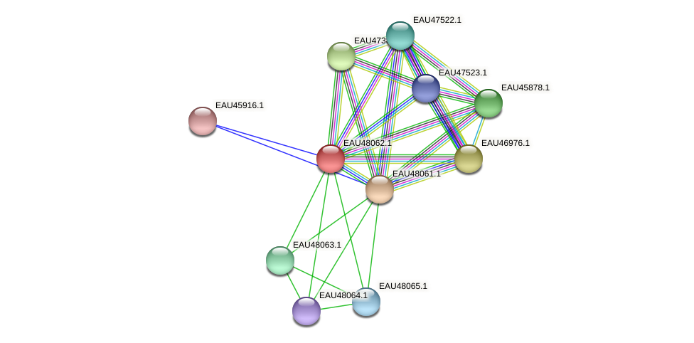 R2601_13890 protein (Pelagibaca bermudensis) - STRING interaction network