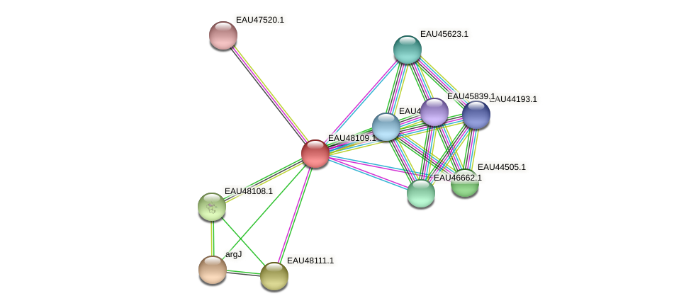 R2601_14125 protein (Pelagibaca bermudensis) - STRING interaction network