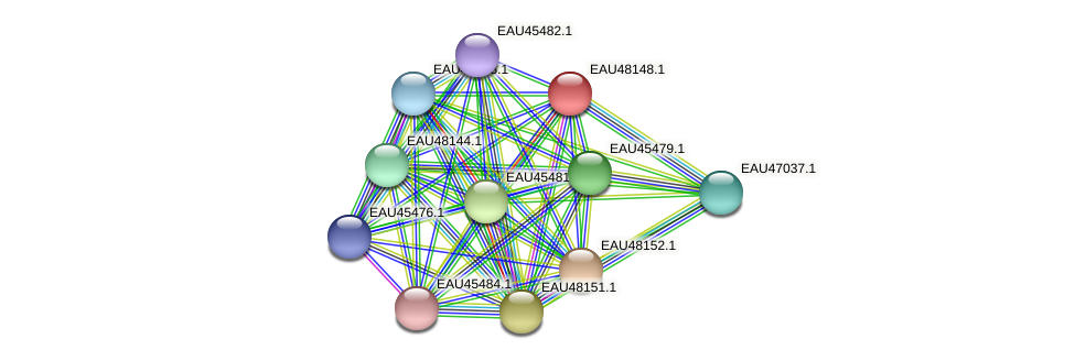 R2601_14320 protein (Pelagibaca bermudensis) - STRING interaction network