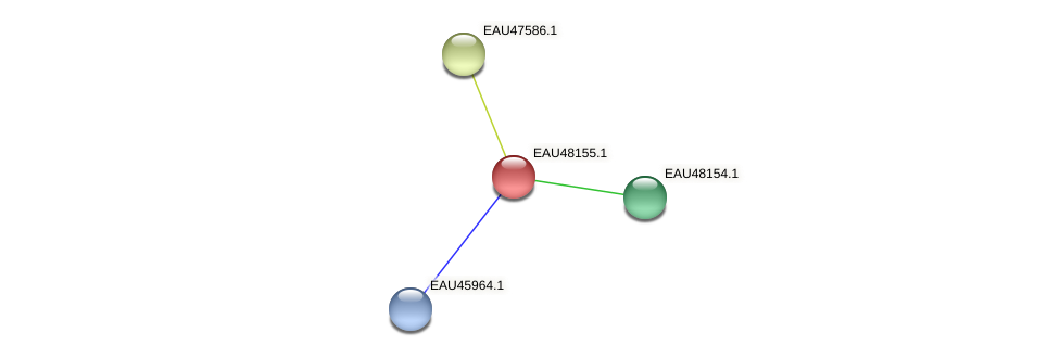 R2601_14355 protein (Pelagibaca bermudensis) - STRING interaction network
