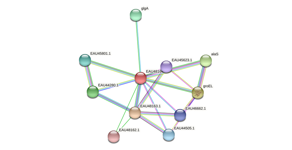 R2601_14400 protein (Pelagibaca bermudensis) - STRING interaction network