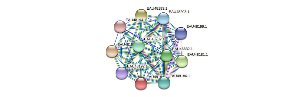 R2601_14500 protein (Pelagibaca bermudensis) - STRING interaction network