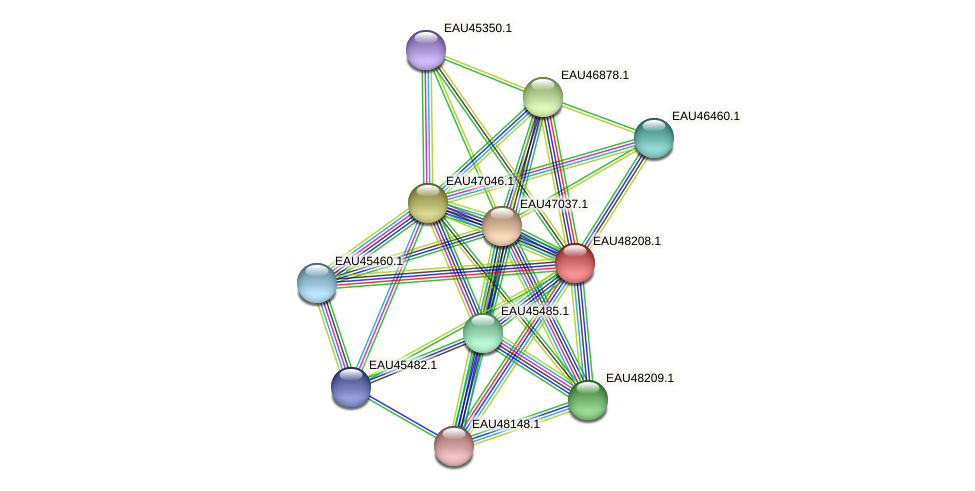 R2601_14620 protein (Pelagibaca bermudensis) - STRING interaction network