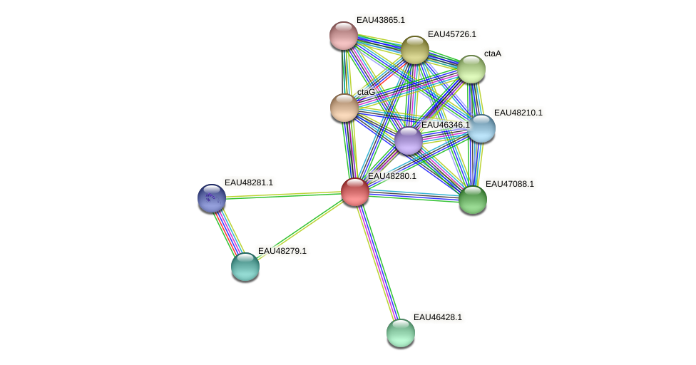 R2601_14980 protein (Pelagibaca bermudensis) - STRING interaction network