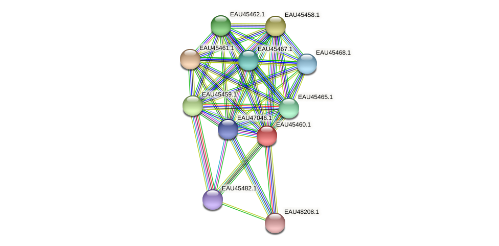 R2601_15090 protein (Pelagibaca bermudensis) - STRING interaction network