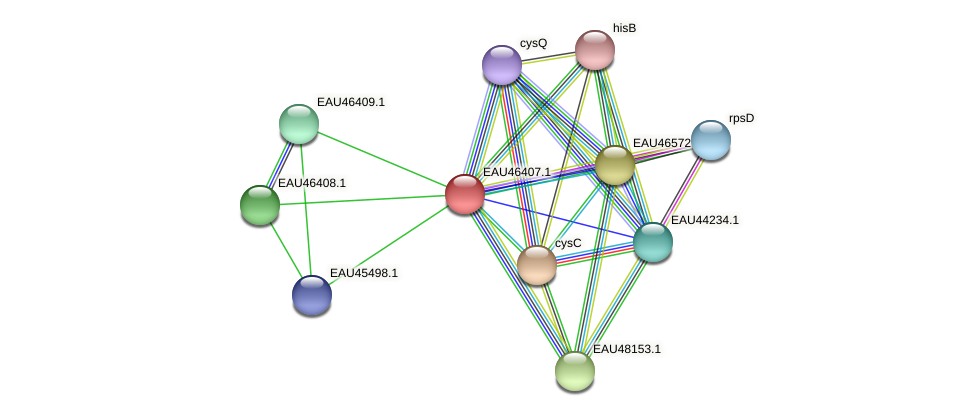R2601_15287 protein (Pelagibaca bermudensis) - STRING interaction network