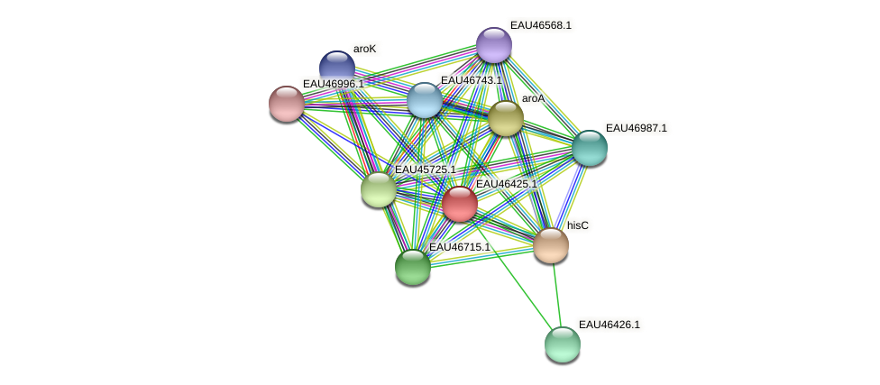R2601_15377 protein (Pelagibaca bermudensis) - STRING interaction network