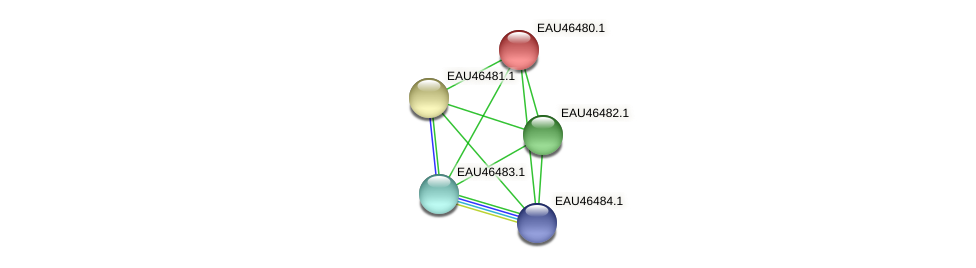 R2601_15652 protein (Pelagibaca bermudensis) - STRING interaction network