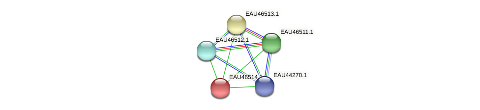 R2601_15822 protein (Pelagibaca bermudensis) - STRING interaction network