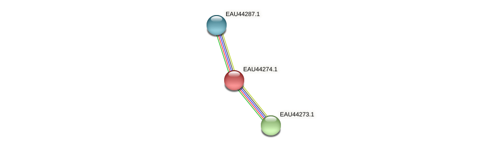 R2601_15855 protein (Pelagibaca bermudensis) - STRING interaction network