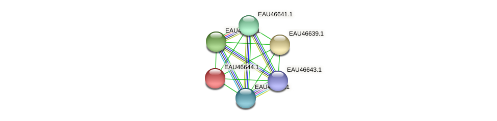 R2601_16025 protein (Pelagibaca bermudensis) - STRING interaction network