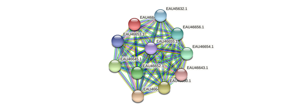 R2601_16035 protein (Pelagibaca bermudensis) - STRING interaction network