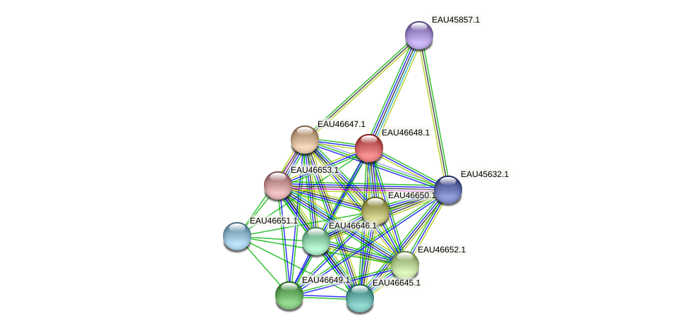 R2601_16045 protein (Pelagibaca bermudensis) - STRING interaction network