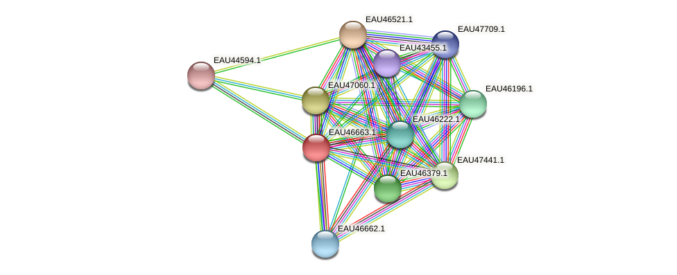 R2601_16120 protein (Pelagibaca bermudensis) - STRING interaction network