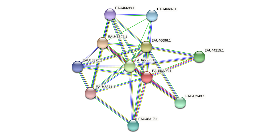 R2601_16270 protein (Pelagibaca bermudensis) - STRING interaction network