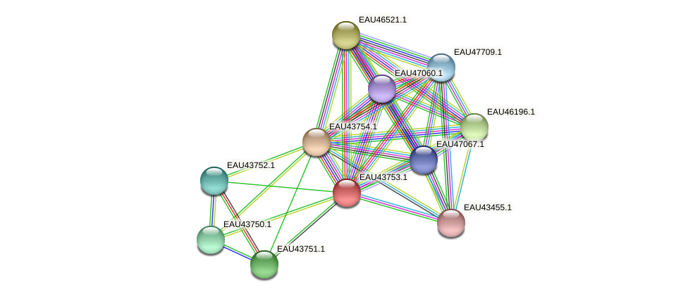 R2601_16880 protein (Pelagibaca bermudensis) - STRING interaction network