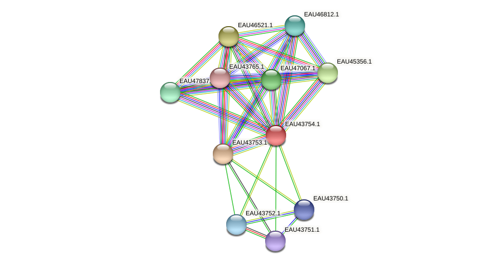 R2601_16885 protein (Pelagibaca bermudensis) - STRING interaction network