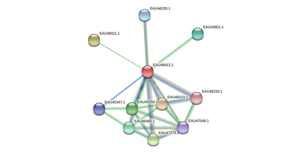 R2601_17299 protein (Pelagibaca bermudensis) - STRING interaction network