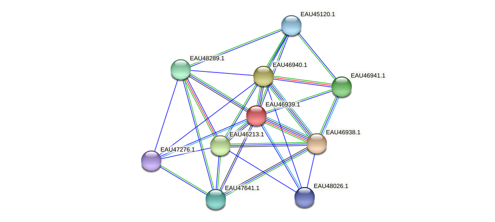 R2601_17434 protein (Pelagibaca bermudensis) - STRING interaction network