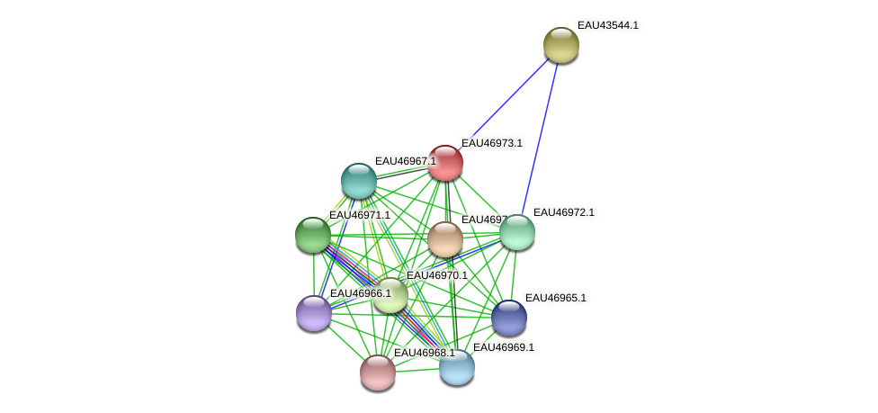 R2601_17604 protein (Pelagibaca bermudensis) - STRING interaction network