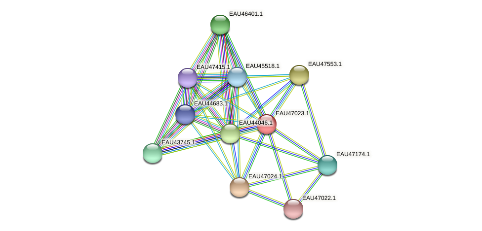 R2601_17854 protein (Pelagibaca bermudensis) - STRING interaction network