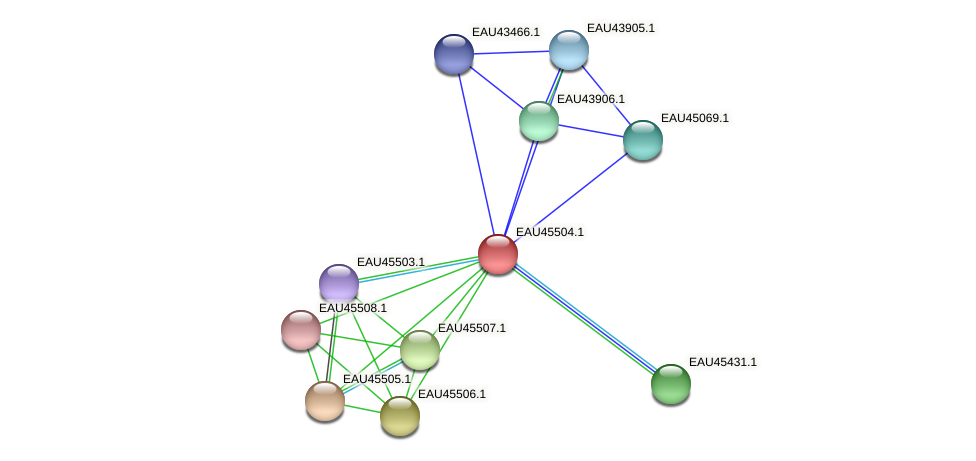 R2601_17918 protein (Pelagibaca bermudensis) - STRING interaction network