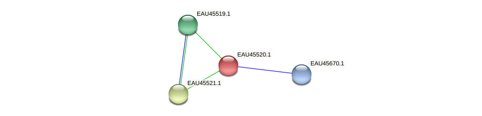 R2601_17998 protein (Pelagibaca bermudensis) - STRING interaction network