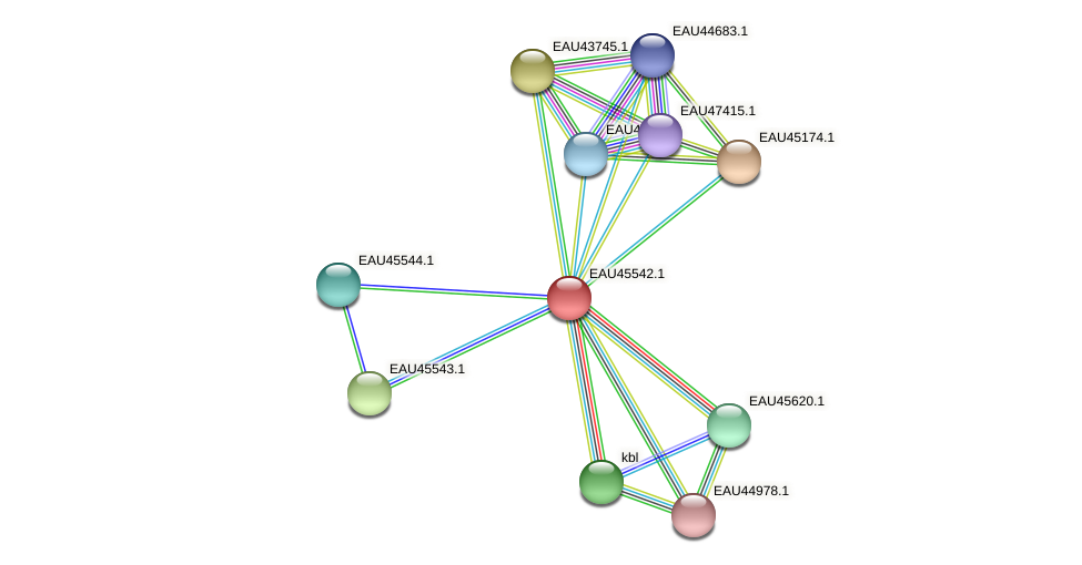 R2601_18108 protein (Pelagibaca bermudensis) - STRING interaction network