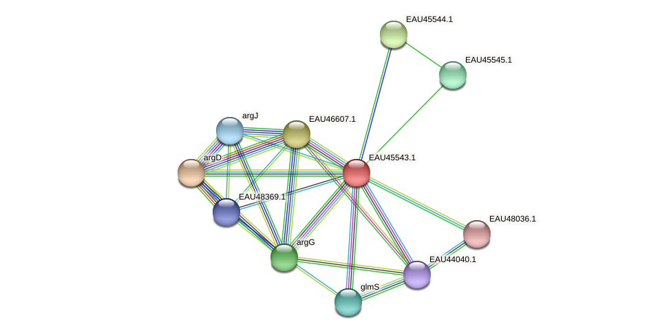 R2601_18113 protein (Pelagibaca bermudensis) - STRING interaction network
