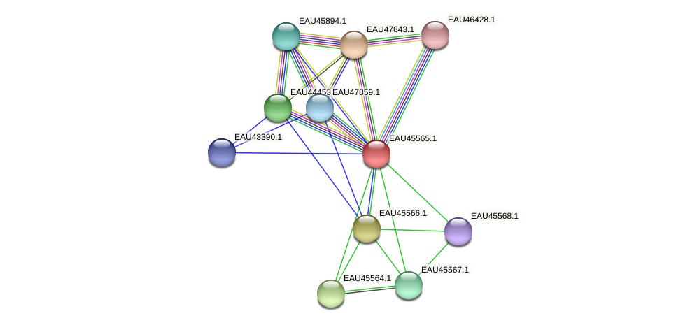 R2601_18223 protein (Pelagibaca bermudensis) - STRING interaction network