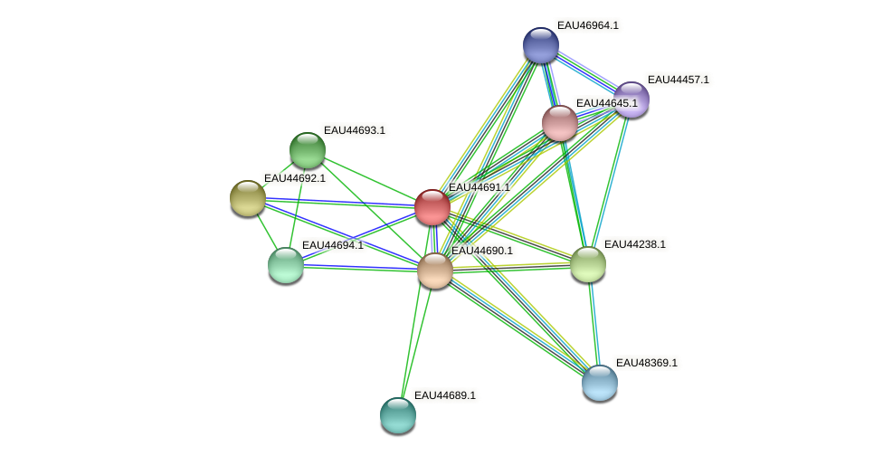 R2601_18593 protein (Pelagibaca bermudensis) - STRING interaction network