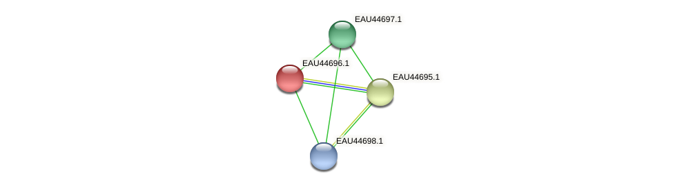 R2601_18618 protein (Pelagibaca bermudensis) - STRING interaction network