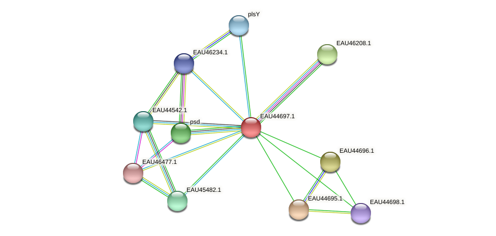 R2601_18623 protein (Pelagibaca bermudensis) - STRING interaction network