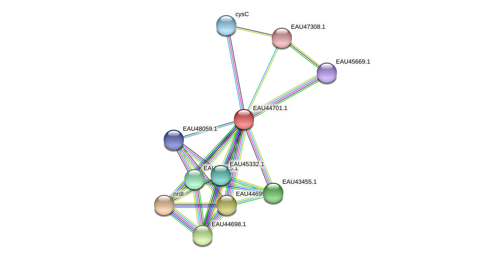 R2601_18643 protein (Pelagibaca bermudensis) - STRING interaction network