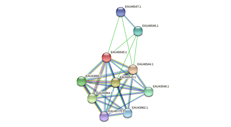 R2601_18835 protein (Pelagibaca bermudensis) - STRING interaction network