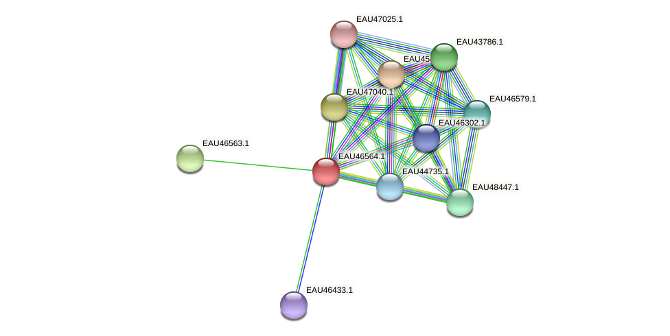 R2601_18930 protein (Pelagibaca bermudensis) - STRING interaction network