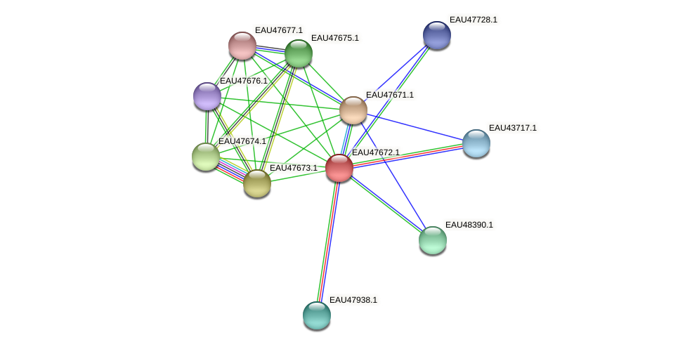 R2601_20084 protein (Pelagibaca bermudensis) - STRING interaction network