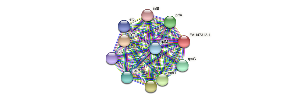 R2601_20911 protein (Pelagibaca bermudensis) - STRING interaction network