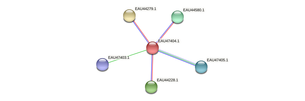 R2601_21371 protein (Pelagibaca bermudensis) - STRING interaction network