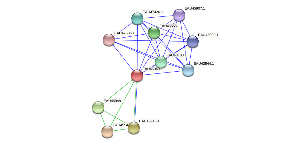 R2601_21802 protein (Pelagibaca bermudensis) - STRING interaction network