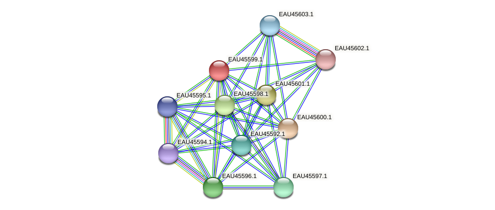 R2601_21937 protein (Pelagibaca bermudensis) - STRING interaction network