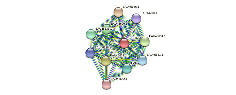 R2601_22117 protein (Pelagibaca bermudensis) - STRING interaction network