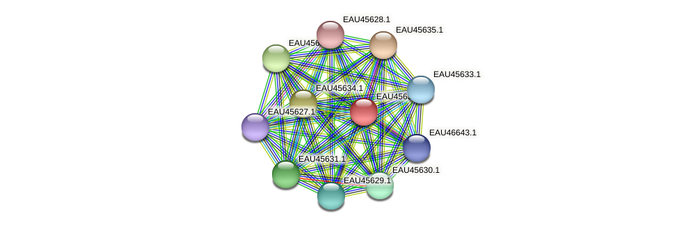 R2601_22122 protein (Pelagibaca bermudensis) - STRING interaction network